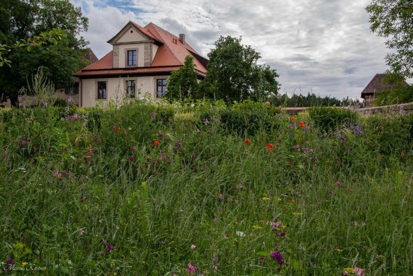 Der Burggarten